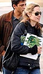 Angelina Jolie used her Tammilyn bag daily