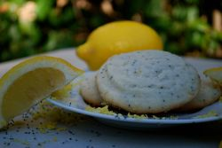 Lemon Poppyseed Shortbread was made specially for Labor Day.