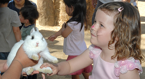 Spring Fling at the L.A. Zoo