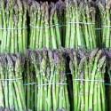 asparagus585