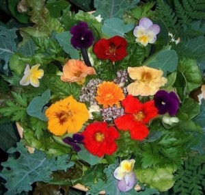 Use edible flowers to decorate spring cocktails