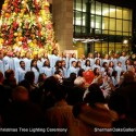 Sherman Oaks Galleria Tree Lighting